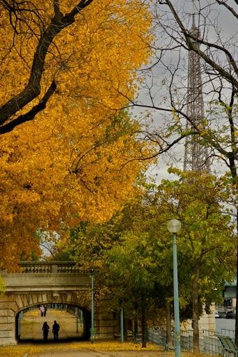 Finding traces of Paris in Melbourne, Australia • Paris Property Group